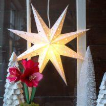 SUPER IDEJA ZA NOVOGODIŠNJU DEKORACIJU: Napravite novogodišnju zvezdu od papira